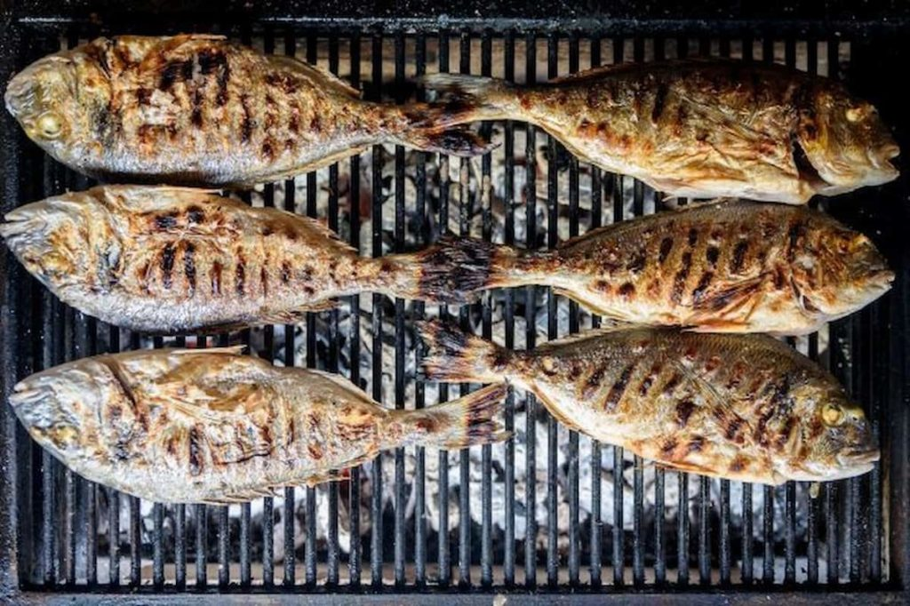 Use the Best Fish to Grill