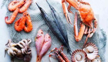 Seafood Business