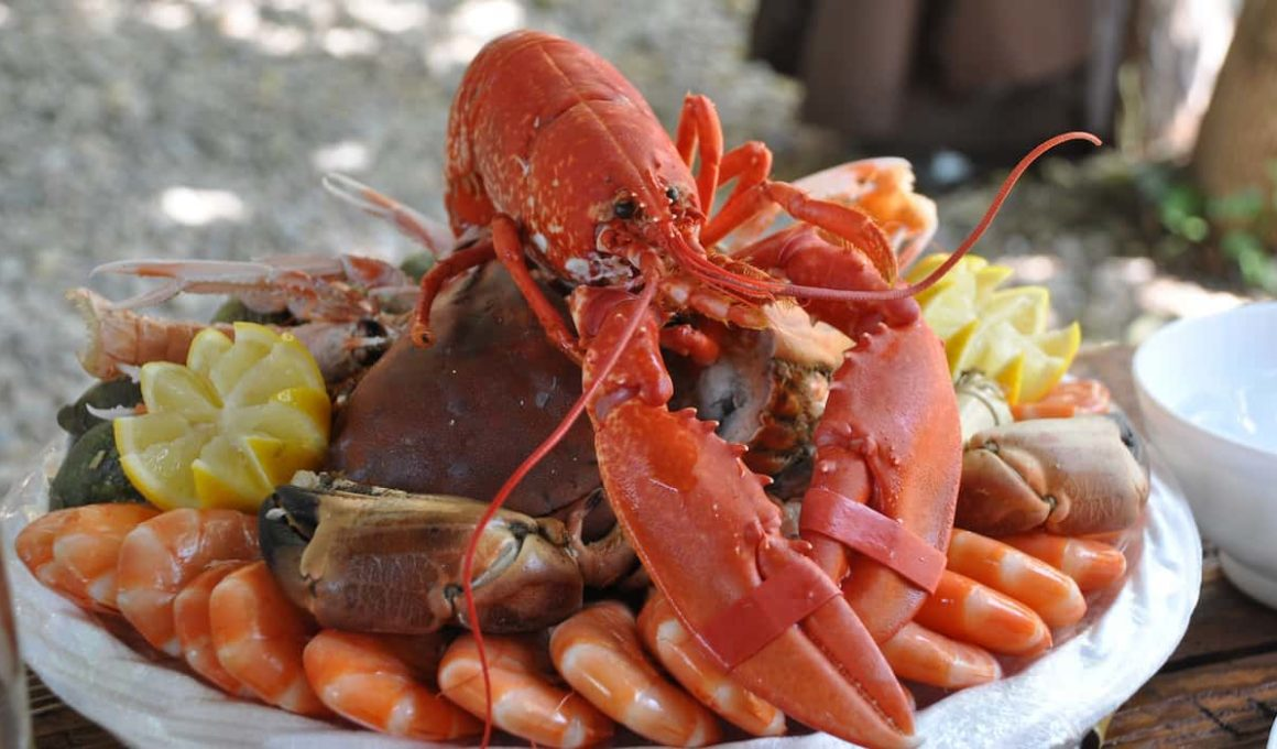 prepare lobster